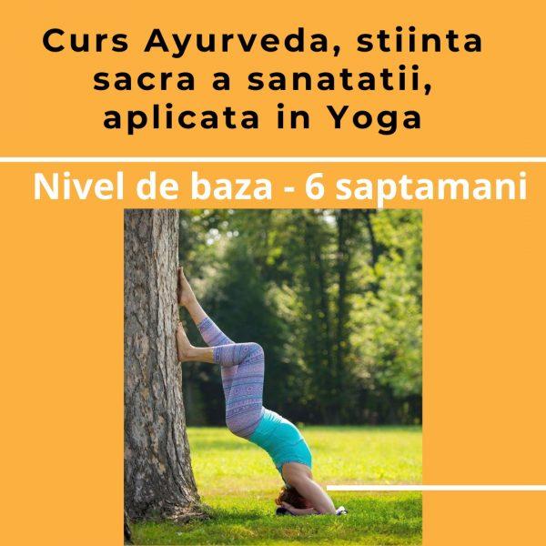 Ayurveda - curs baza